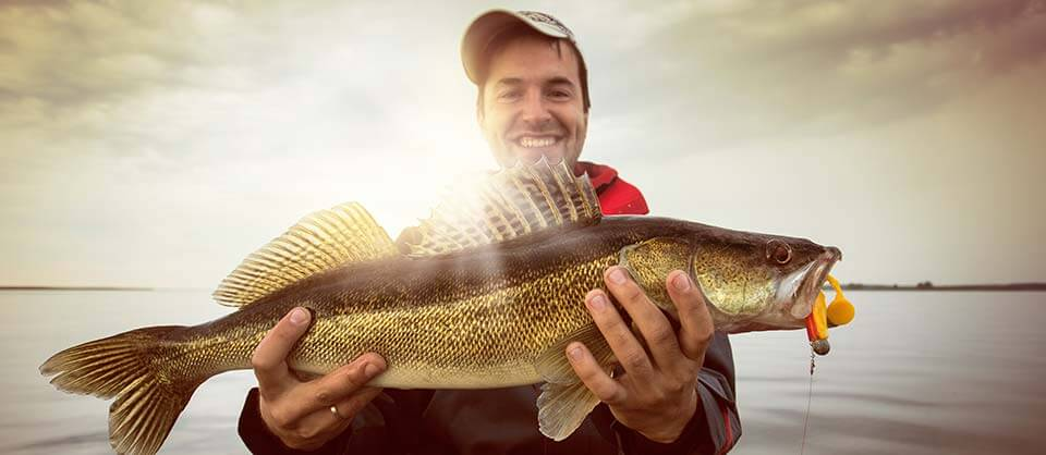 Aabsolute lake erie fishing charters guide service for Lake erie walleye fishing report